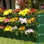 Виды цветочниц и особенности выбора