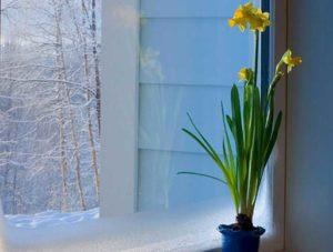 Стоит ли заказывать установку пластиковых окон зимой